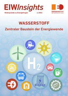 EIWInsights Grafik Wasserstoff